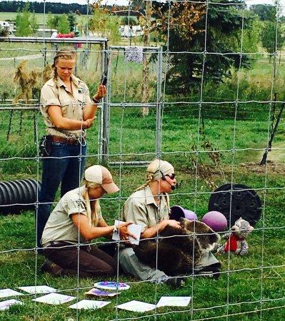 Discovery Wildlife Park ภาพถ่าย