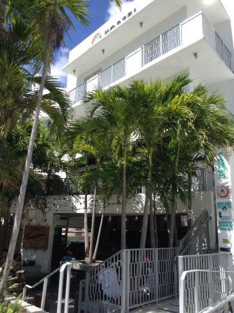 Hi Miami Beach Photo