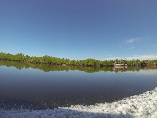 Puerto Barillas Marina & Lodge: Si vas al Hotel, es un musst realizar el tour hacía la punta San Juan impartido por el mismo hot