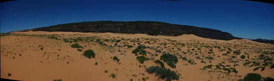 Coral Pink Sand Dunes State Park: Panorama of the dunes. Try to find the people!