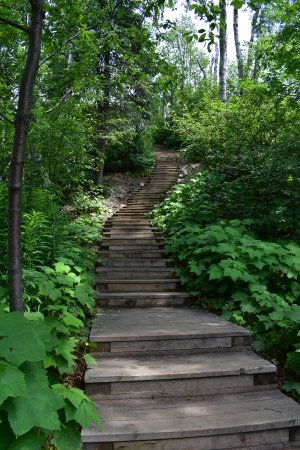 Schroeder, MN: Steps down to the beach