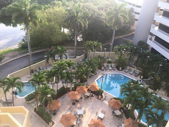 Embassy Suites By Hilton Boca Raton Boca Rat N Fl Opiniones Y Comparaci N De Precios