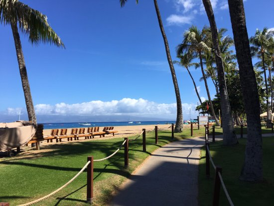 Kaanapali Alii: In front of tower 1 & 2