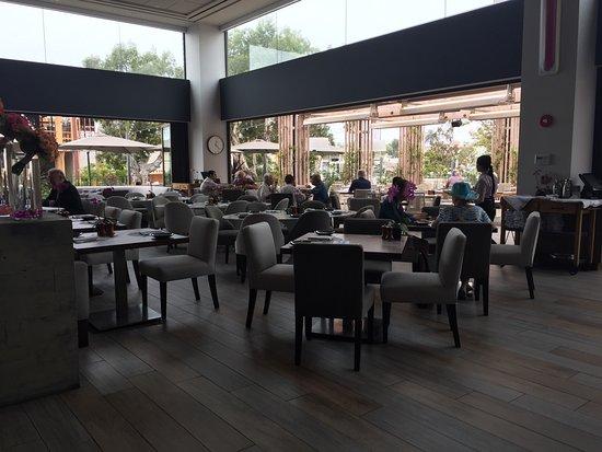 The Lot La Jolla Restaurant La Jolla Ca
