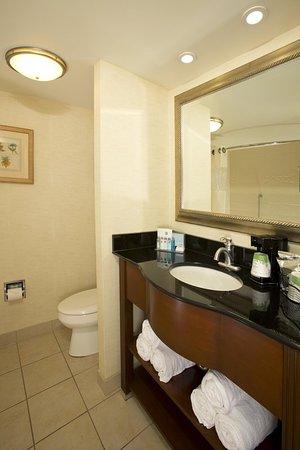 Hampton Inn Alexandria/Pentagon South: Guest Bathroom