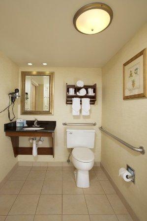 Hampton Inn Alexandria/Pentagon South: Accessible Bathroom