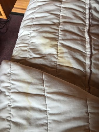 Whakapapa, New Zealand: Filthy, stained sheets
