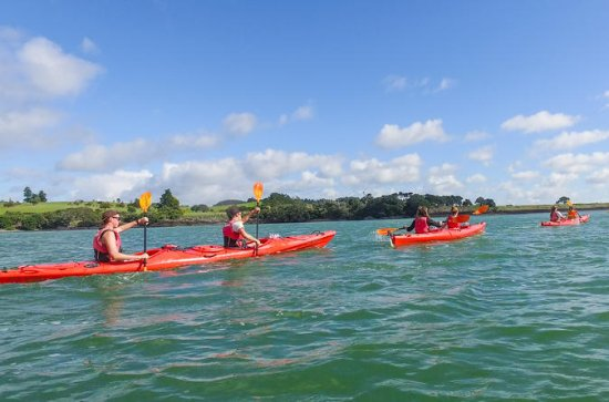 Bay of Islands Half Day Guided Tour
