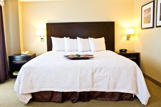 Hampton Inn & Suites Boston Crosstown Center: King Suite Bed