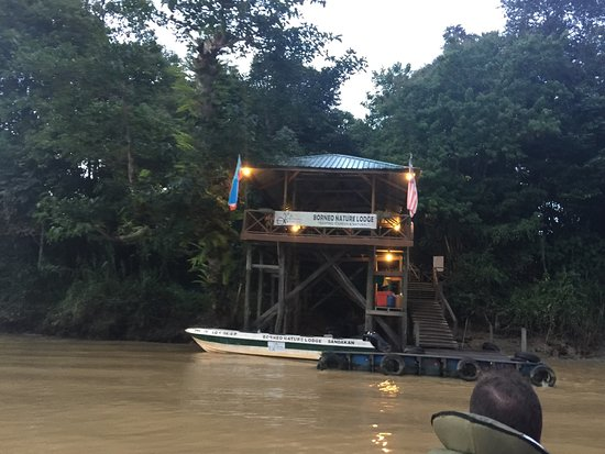 Borneo Nature Lodge: photo0.jpg