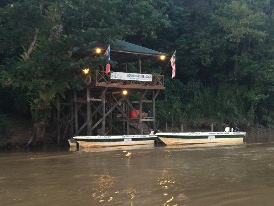 Borneo Nature Lodge: photo1.jpg