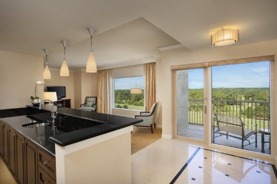 Waldorf Astoria Orlando: Waldorf Suite with Disney View Balcony