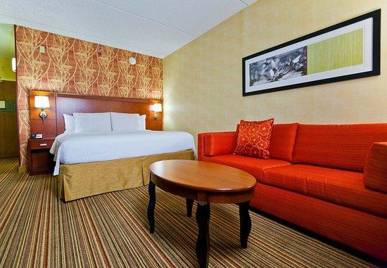 Des Plaines, IL: King Guest Room
