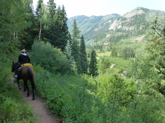 Snowmass, CO: One of many wonderful views on our ride.