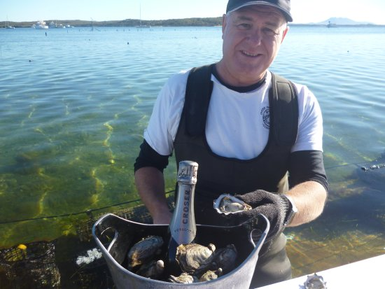 Oyster Farm Tours - Coffin Bay