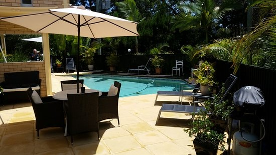 Noosa Cove Holiday Apartments: Noosa Cove's Pool and sunlounge area
