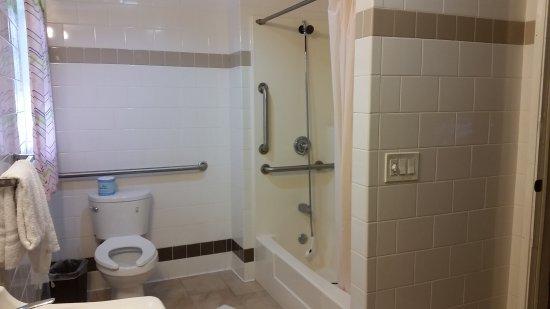Hollywood La Brea Motel: Bathroom (note dangling shower fixture; have to handhold)