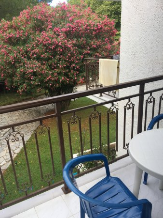 Amalia Apartments Hotel Reviews Koukounaries Greece