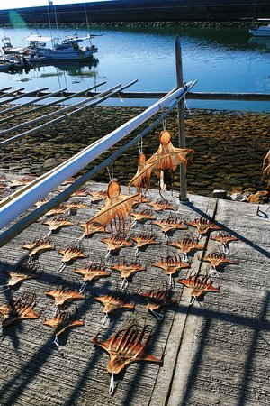 Amakusa Ariake Octopus street : すっかり乾燥した干しダコ2