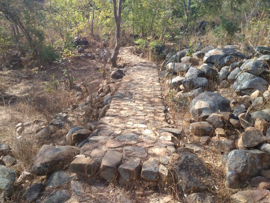 nkhaji Nature Park: A trail being developed at the reserve and some great views and forest