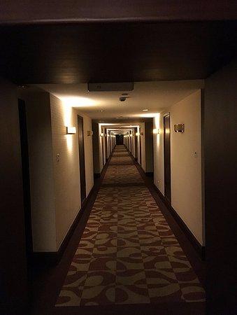 Ruitai Hongqiao Hotel: 長い廊下