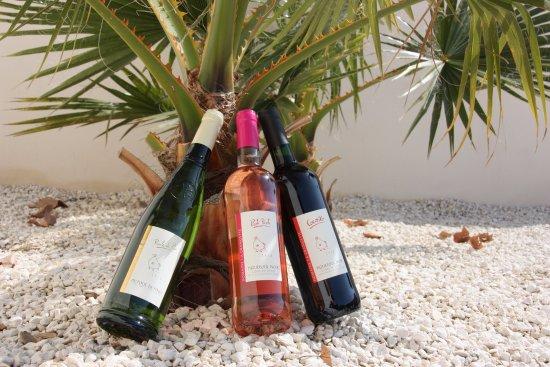 Castelnau-de-Guers, France: Venez découvrir le piquepoul noir vinifié en rosé et en rouge
