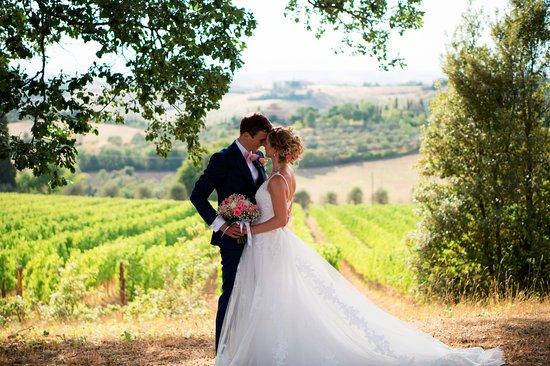 Trequanda, Italië: Beautiful view over the vineyard