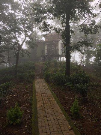 Chateau Woods: photo0.jpg