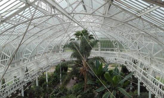 People's Palace and Winter Gardens : Winter Garden viewed from Gallery