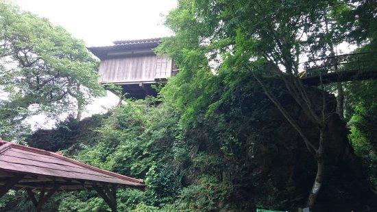 Gyodosan Jyoinji Temple: DSC_1129_large.jpg