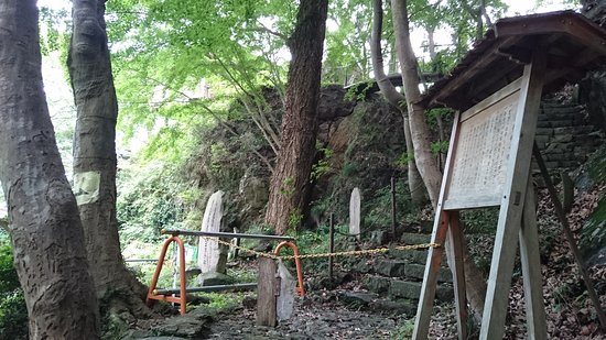 Gyodosan Jyoinji Temple: DSC_1130_large.jpg