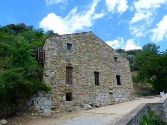 Sainte-Lucie-de-Tallano, Frankreich: Moulin à huile