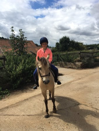 Worstead, UK: My daughter loves going for hacks here.  Cat is a brilliant instructor and is soon knowledgeable