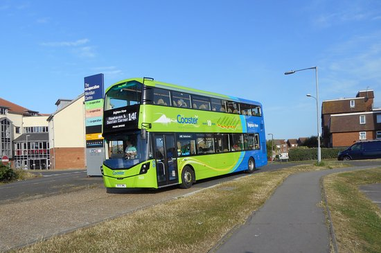 Great eco friendly buses with names of local famous and