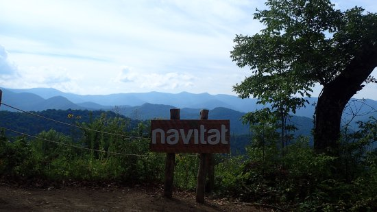 Navitat Canopy Adventures - Asheville Zipline: Zipline starting point.