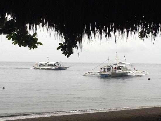 Pura Vida Beach & Dive Resort: photo1.jpg