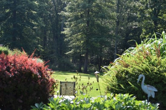 Bernetta's Place Bed & Breakfast Inn by the Lake: Looking down the backyard