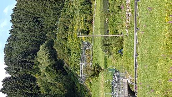 Gutach im Schwarzwald, Alemania: IMG-20170806-WA0000_large.jpg