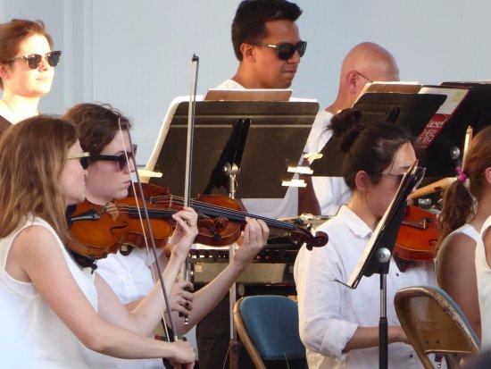 Lake Harriet: Violin Section