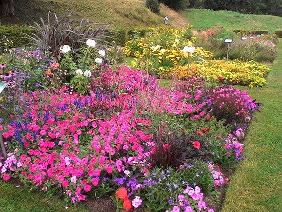 Les jardins suspendus le havre aktuelle 2017 lohnt es sich - Jardin fleurie le havre ...