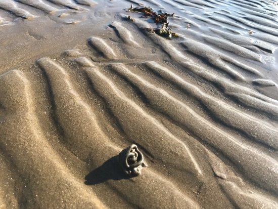 West Shore Beach: photo3.jpg