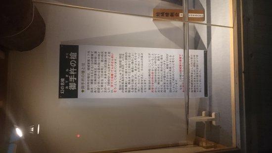 Yuki, Japón: DSC_2313_large.jpg