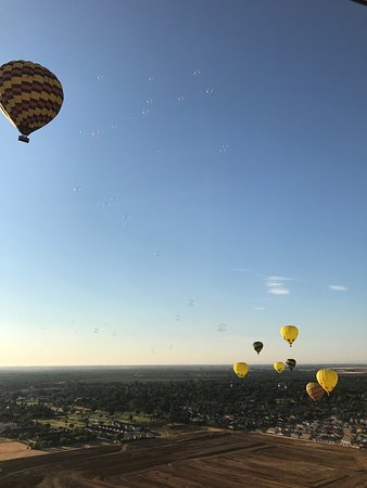 Balloons Above the Valley: photo5.jpg
