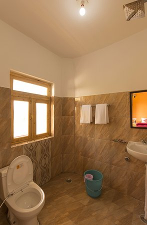 Zostel Leh: Dorm Bathroom
