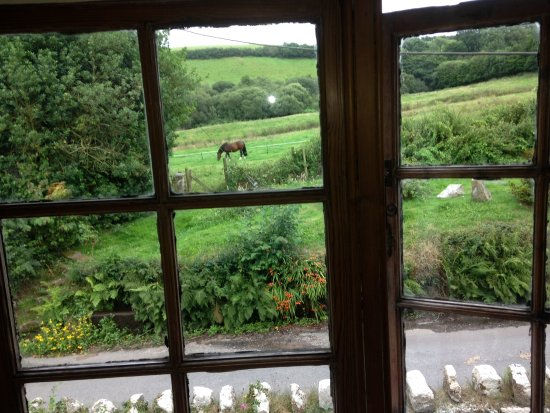 Moretonhampstead, UK: View from our bedroom at Great Sloncombe Farm B&B