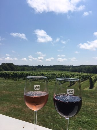 Stonington Vineyards: Pic from the covered deck looking over the vineyards