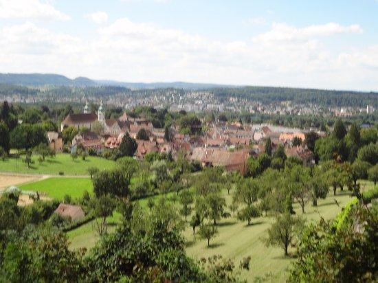 Schloss Birseck - vue sur Arlesheim