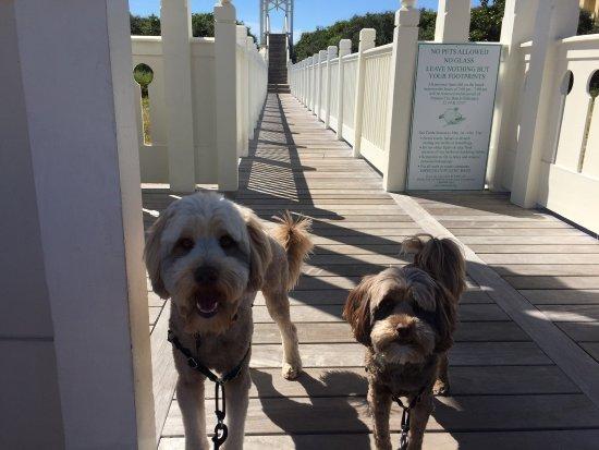 Carillon Beach: photo3.jpg