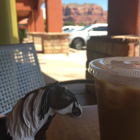 Espresso, Breakfast, Gorillas and Horses
