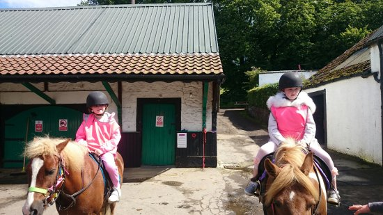 Denny, UK: Wellsfield Equestrian-Horseback Riding